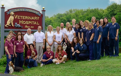 Ludwig's Veterinary Hospital Team