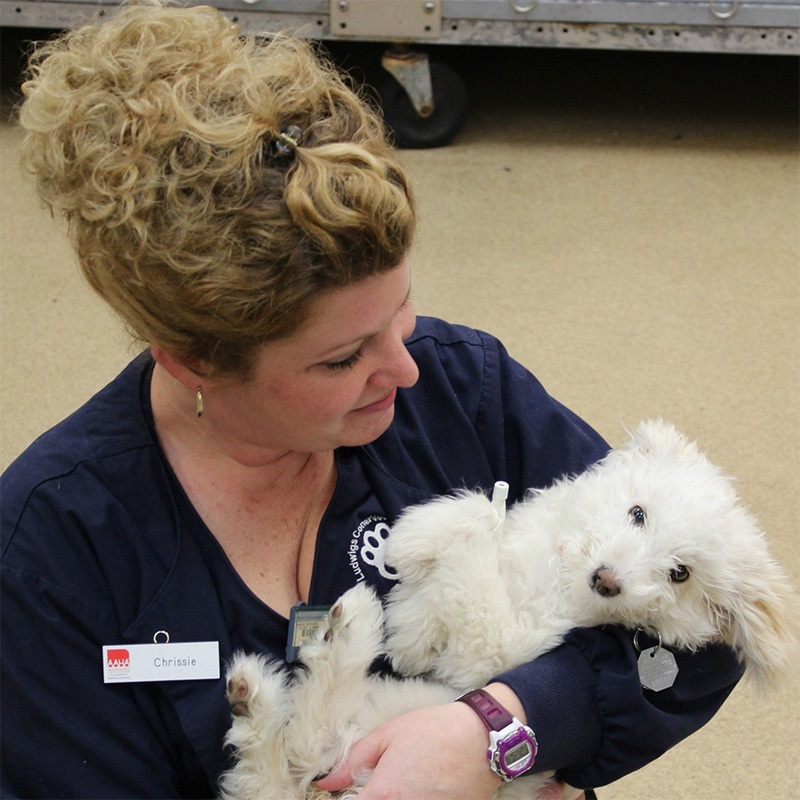 Chrissie Hahn, Veterinary Technician